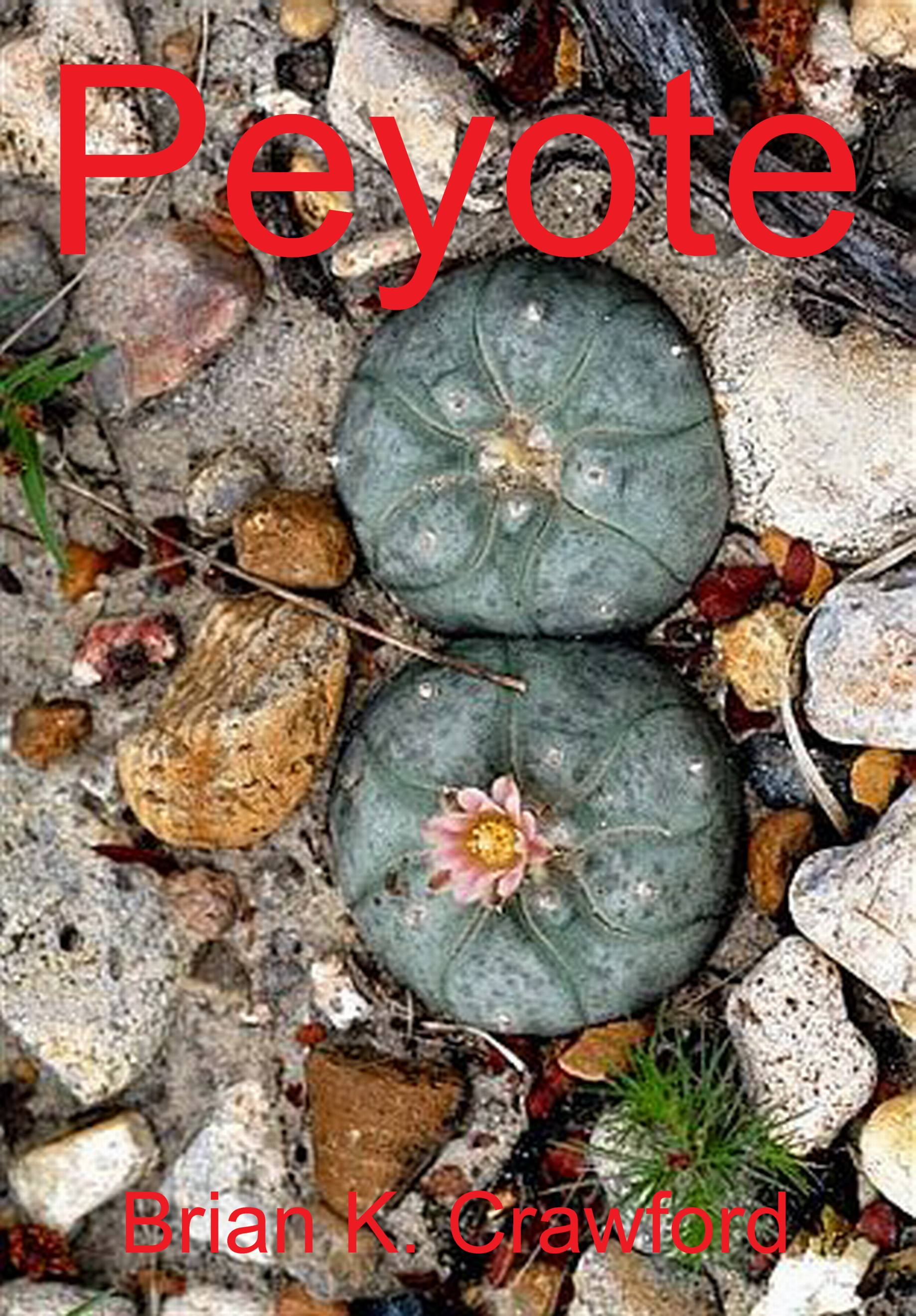 Cover of Peyote - a living button of Peyote