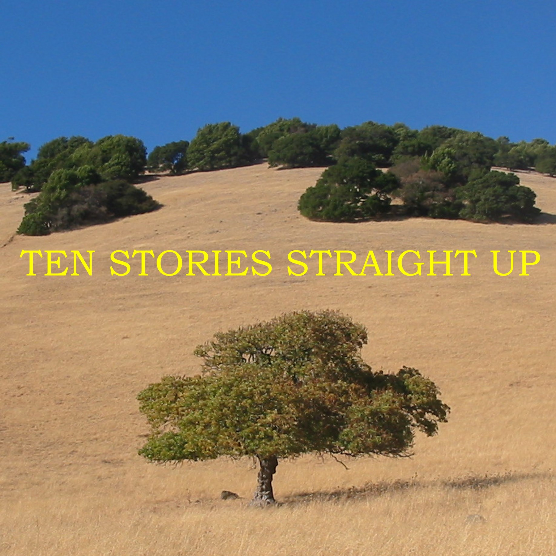 Cover of Ten Stories Straight Up - an oak tree in Marin